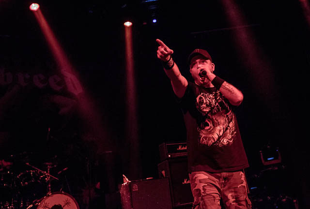 Hatebreed, Napalm Death in Kreshesh Nepitash