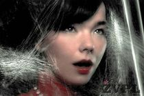 Bjork<br><small>(Foto: Warren Dupreez & Nick Thornton Jones)</small> - thumbnail